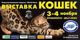 выставка кошек 2018